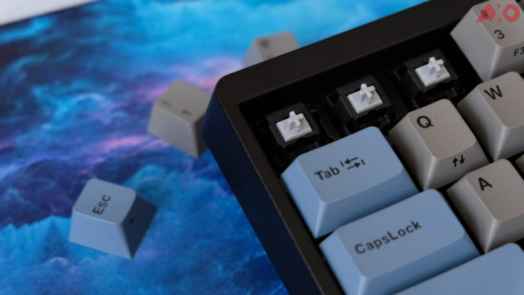 Leopold FC650MDS PD Mechanical Keyboard Review